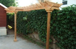 landscape-design-build-experts (9)